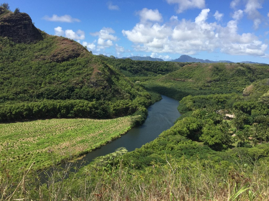 An overlook of the Wailua Heritage Trail. Views like this are not that uncommon in Kauai, which means you are usually gawking and gasping as you gaze.